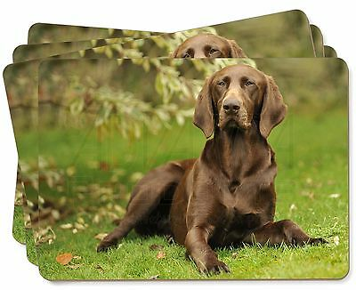 German Pointer Dog Picture Placemats in Gift Box, AD-GSP1P