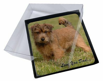 4x Norwich/Norfolk Terrier 'Love You Dad' Picture Table Coasters Set in, DAD-80C