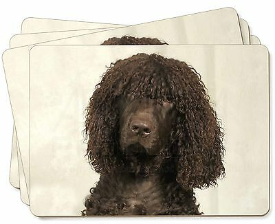 Irish Water Spaniel Dog Picture Placemats in Gift Box, AD-IWSP