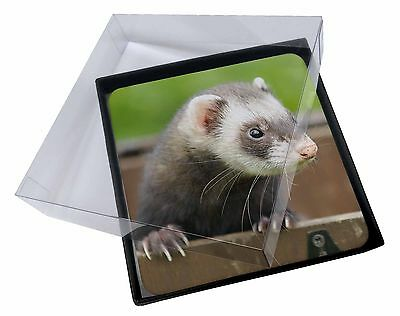 4x Ferret Print Picture Table Coasters Set in Gift Box, FER-2C