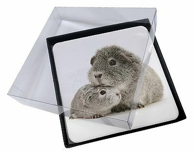 4x Two Silver Guinea Pigs Picture Table Coasters Set in Gift Box, GIN-3C