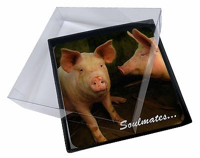 4x Pigs in Love Sty 'Soulmates' Picture Table Coasters Set in Gift Box, SOUL-73C