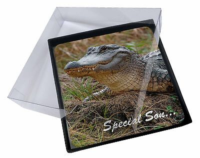 4x Crocodile 'Special Son' Picture Table Coasters Set in Gift Box, SS-CR1C