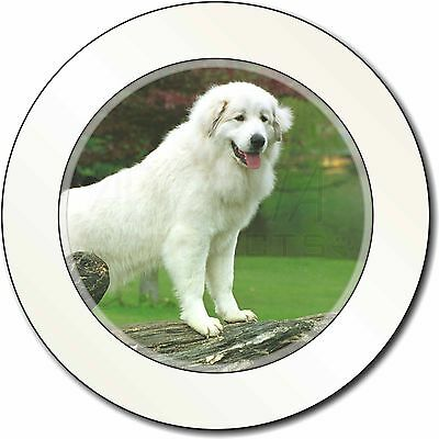 Pyrenean Mountain Dog Car/Van Permit Holder/Tax Disc Gift, AD-PM1T