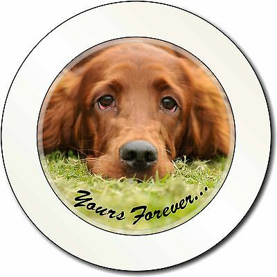 Red Setter Dog 'Yours Forever' Car/Van Permit Holder/Tax Disc Gift, AD-RS2yT