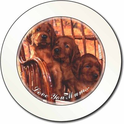Irish Red Setter Puppies 'Love You Mum' Car/Van Permit Holder/Tax D, AD-RS53lymT