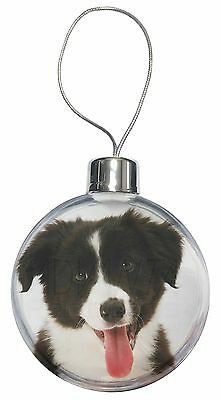 AD-CO39CB Border Collie in Mirror Christmas Tree Bauble Decoration Gift