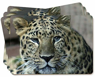 Leopard Picture Placemats in Gift Box, AT-22P