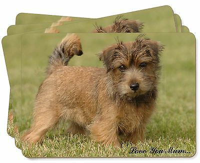 Norfolk Norwich Terrier 'Love You Mum' Picture Placemats in Gift Box, AD-NT1lymP