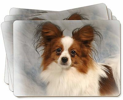 Papillon Dog Picture Placemats in Gift Box, AD-PA1P