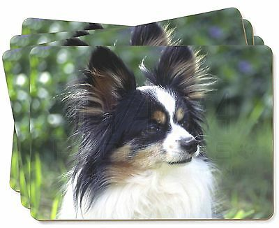 Papillon Dog Picture Placemats in Gift Box, AD-PA62P