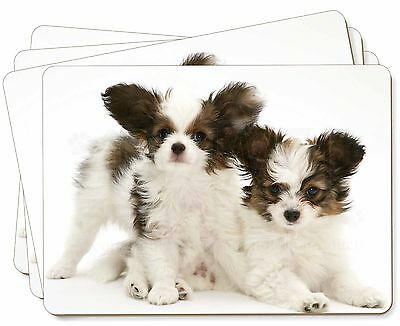 Papillon Dogs Picture Placemats in Gift Box, AD-PA65P