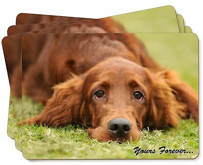 Red Setter Dog 'Yours Forever' Picture Placemats in Gift Box, AD-RS2yP