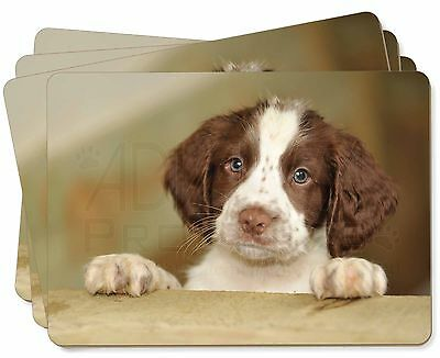 Springer Spaniel Puppy Dog Picture Placemats in Gift Box, AD-SS76P