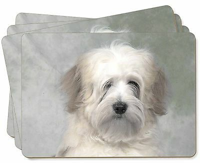 White Tibetan Terrier Dog Picture Placemats in Gift Box, AD-TT1P