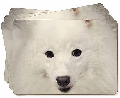 Japanese Spitz Dog Picture Placemats in Gift Box, AD-JS1P