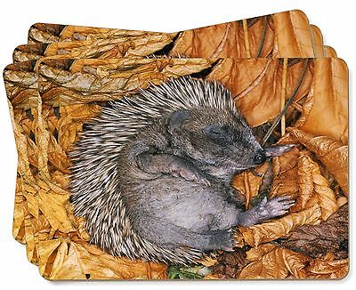 Sleeping Baby Hedgehog Picture Placemats in Gift Box, AHE-4P