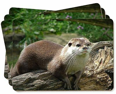 River Otter Picture Placemats in Gift Box, AO-2P