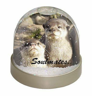 Cute Otters 'Soulmates' Photo Snow Globe Waterball Stocking Filler Gi, SOUL-72GL