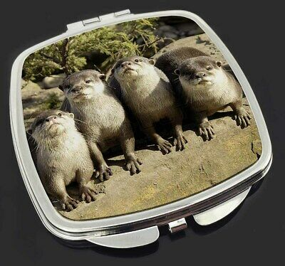 Cute Otters Make-Up Compact Mirror Stocking Filler Gift, AO-6CM
