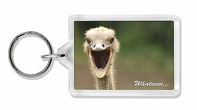 Ostritch with 'Whatever' Photo Keyring Animal Gift, AB-OS2K