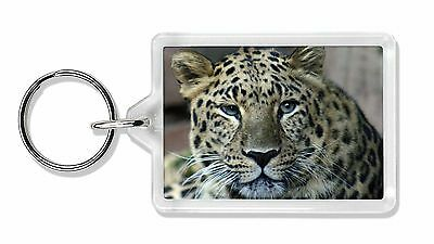 Leopard Photo Keyring Animal Gift, AT-22K