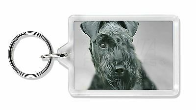 Kerry Blue Terrier Dog Photo Keyring Animal Gift, AD-KB1K