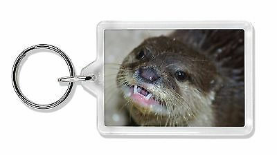 Cheeky Otters Face Photo Keyring Animal Gift, AO-1K