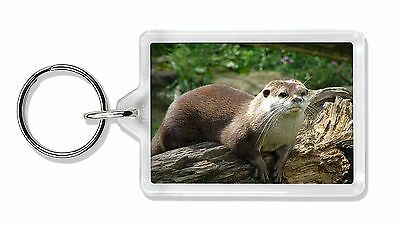 River Otter Photo Keyring Animal Gift, AO-2K