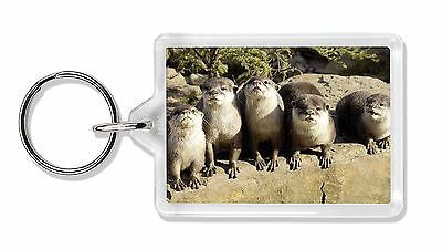 Cute Otters Photo Keyring Animal Gift, AO-6K
