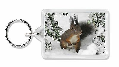 Forest Snow Squirrel Photo Keyring Animal Gift, AS-4K