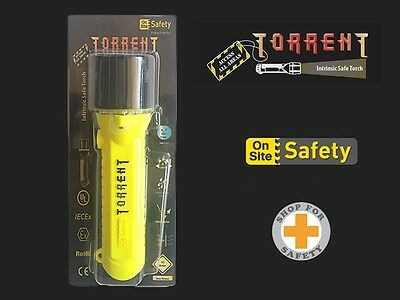 Torrent Intrinsic Torch – Ideal for high risk areas