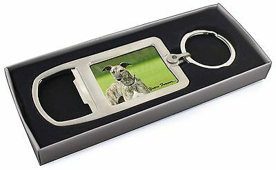 Greyhound Dog 'Yours Forever' Chrome Metal Bottle Opener Keyring in , AD-LU7yMBO