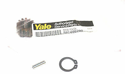 New Yale 501096200 Motor Pinion