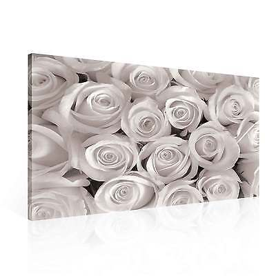 White Roses CANVAS PRINT ART PICTURE (PP1566DK)