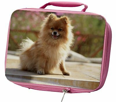 Pomeranian Dog on Decking Insulated Pink Lunch Box, AD-PO89LBP