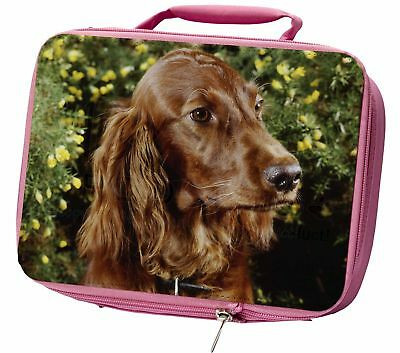 Irish Red Setter Dog Insulated Pink School Lunch Box Bag, AD-RS1LBP