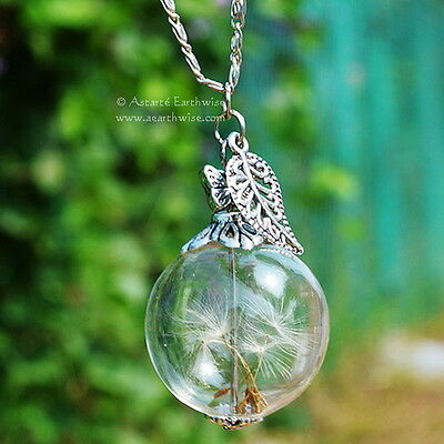 DANDELION WITCHES WISH BALL WITH CHAIN Wicca Pagan Witch Goth  Spell
