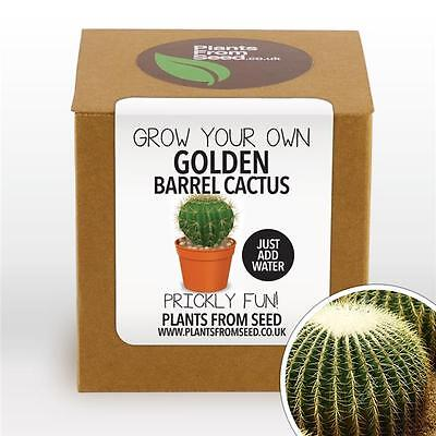 Plants From Seed - Grow Your Own Golden Barrel Cactus Plant Kit