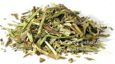 HYSSOP (Hyssopus officinalis) 56g CUT HERB Witch Wicca Pagan Goth PROTECTION