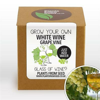 Plants From Seed - Grow Your Own White Grape Vine Kit