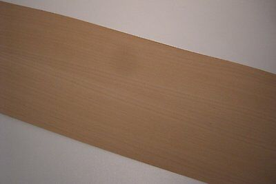 Real wood Veneer Beech steamed with Hot melt adhesive iron-on 210x25 cm