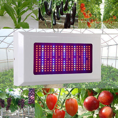 300W Full Spectrum LED Grow Light Veg Flower Hydroponics Indoor Plant Lamp bulb