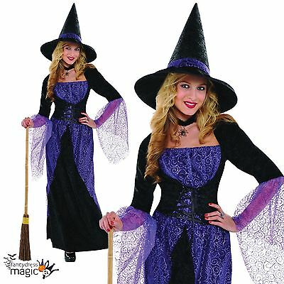 Ladies Womens Halloween Pretty Potion Witch Fancy Dress Costume Outfit with Hat