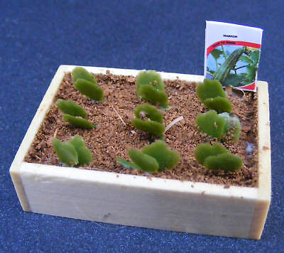 1:12 Scale Seed Box & Seedlings Dolls House Miniature Garden Vegetable Accessory