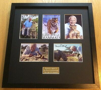 David Attenborough Hand Signed Photos Mounted Frame