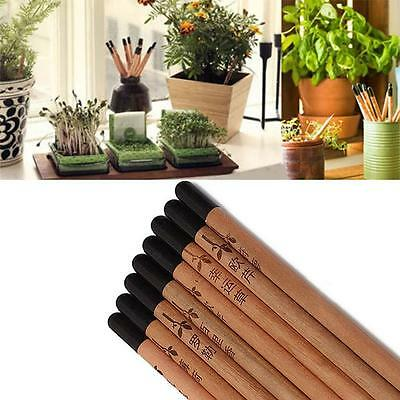 8PCS/Set Sprouting Bud Sprout Pencil Plant - Herb Basil Tomato Green Pepper WT