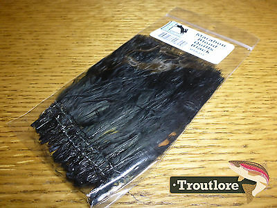 Hareline Dubbin Black Marabou Blood Quills Strung - New Fly Tying Feathers