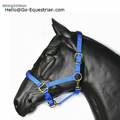 Hy Deluxe Padded Cob Head Collar- Bottle green