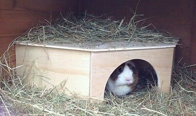 Corner Guinea Pig /Tortoise / Rabbit Play House/Shelter